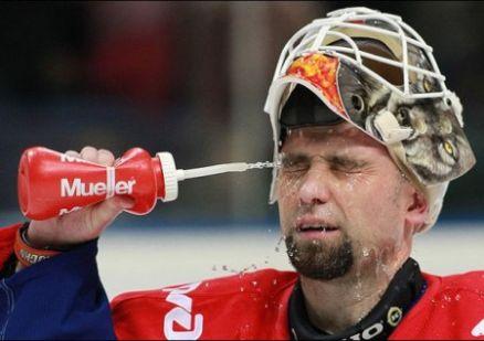 Фото: yarsport.ru